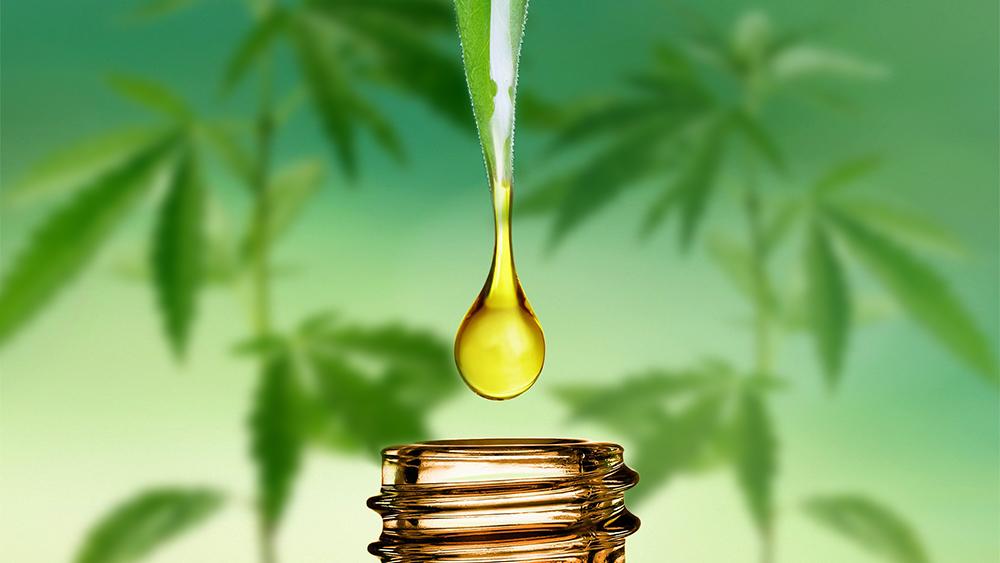CBD Öl Erfahrungen - wie wirkt CBD Öl