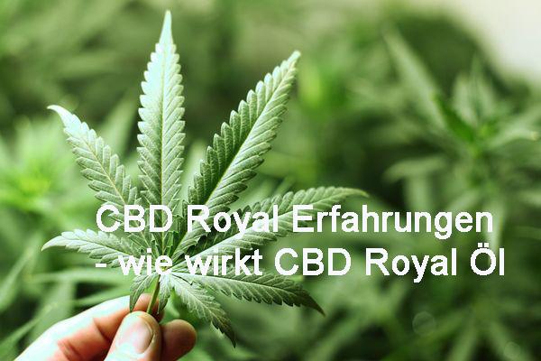 CBD Royal Erfahrungen - wie wirkt CBD Royal Öl