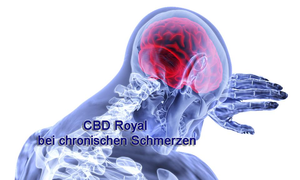 CBD Royal bei chronischen Schmerzen
