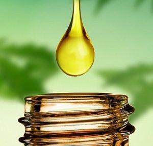 CBD Royal Öl in München kaufen
