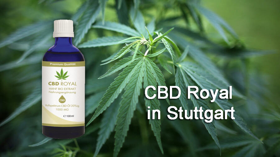 cbd royal öl in stuttgart