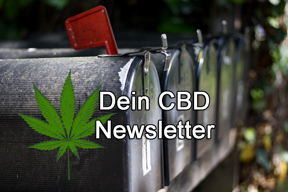 dein cbd newsletter