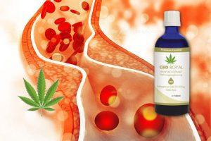 cannabidiol bei zu hohem cholesterinspiegel