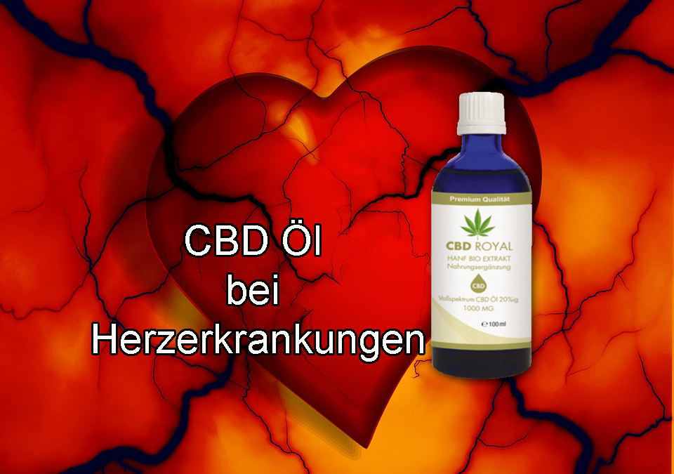 CBD ÖL bei Herzerkrankungen – Tipps vom Experten aus Berlin